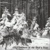 AHNENERBE/WOLFENBURG/OLD FIRE/DEMIURG/LECHIA-CD-Soldiers Of The Wolf's Rune